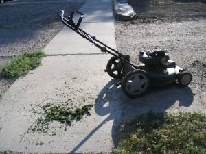 Look!  There is lawnmower poop!  It is alive!